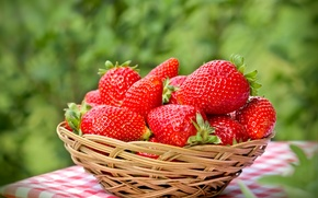 Picture strawberry, ripe, red, basket, berries, berries, fresh, strawberry