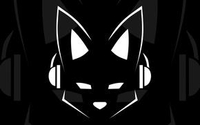 Picture minimalism, headphones, Lapfox Trax