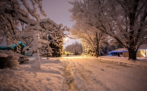 Picture snow, background, winter, nature, trees, car, the evening, new year, beautiful, machine