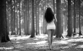 Picture forest, girl, trees, dress