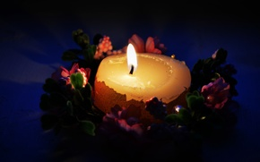 Picture light, flowers, night, fire, flame, a month, wax, wreath, Candle