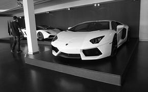 Picture white, lamborghini, aventador, goodlife