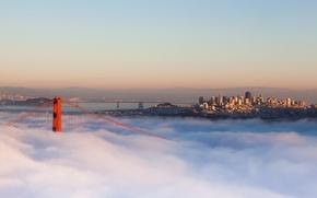 Wallpaper bridge, the city, fog, morning, CA, USA, California, San Francisco
