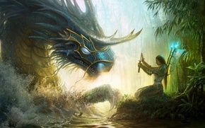 Picture girl, sword, fantasy, forest, Dragon, river, armor, art, artwork, warrior
