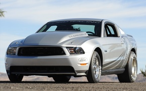 Wallpaper Mustang, Ford, 2010, Cobra, Jet, 5.4, super