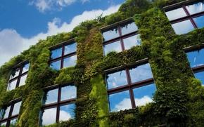 Wallpaper Museum, France, Paris, the sky, embankment Branly, Windows