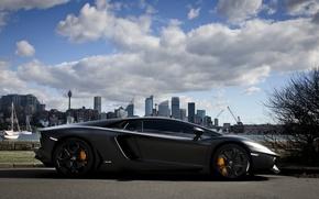 Picture the sky, clouds, the city, shadow, profile, lamborghini, promenade, aventador, lp700-4, Lamborghini, aventador, matte black, …