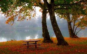 Picture autumn, forest, trees, landscape, Villa, home, Nature, house, forest, architecture, trees, landscape, bench, nature, autumn, …