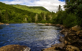 Picture forest, trees, mountains, river, stones, Canada, Quebec, Jacques Cartier national park