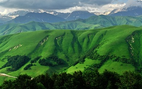 Picture grass, mountains, South Ossetia