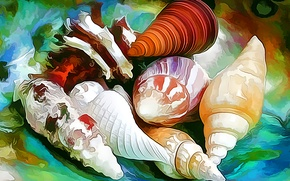 Picture sea, line, paint, sink, shell