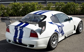 Picture Maserati, Trophy, '2003, 07 _2