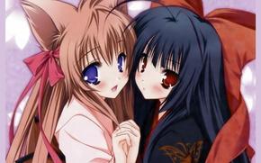 Picture hands, kimono, bow, ears, friend, big eyes, Neko girl