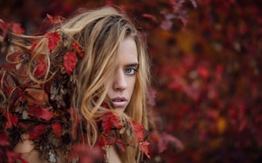 Picture autumn, look, leaves, bokeh, Marta, Jesse Duke