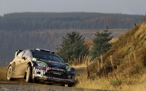 Picture Ford, Forest, Sport, Car, Car, WRC, Rally, Fiesta, Riding, Dirty
