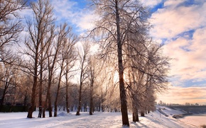 Picture cold, frost, road, the sky, clouds, snow, trees, landscape, nature, Winter, forest, road, landscape, nature, ...