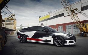 Picture Audi, Vossen