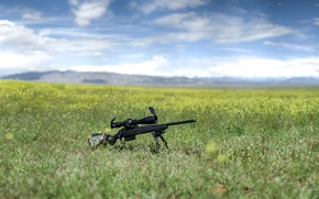 Picture nature, weapons, optics, rifle, sniper, Tikka T3