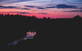 Picture sky, trees, sunset, clouds, Poland, magenta, silhouettes, pines, burgundy, Suchawa