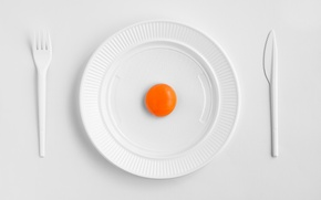 Picture plate, knife, plug, the yolk