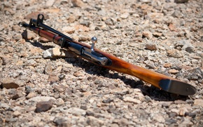 Picture weapons, rifle, stones, shutter, Mosin, store, M44