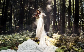 Picture forest, girl, music, violin