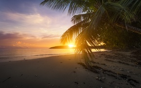 Picture beach, sunset, palm trees, the ocean, The Indian ocean, Seychelles, Indian Ocean, Seychelles, Anse Boileau, …