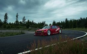 Picture The sky, Forest, Track, Lancia, Delta, 1992, Cloudy, Shrubs, EVO1, Lasupra