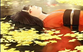 Picture leaves, water, the demon, kimono, red eyes, horns, youkai