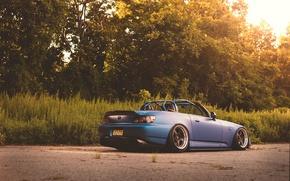 Picture road, the sun, trees, Bush, wheel, back, Honda, S2000, tail lights, S2K