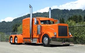 Picture tuning, truck, tractor, peterbilt 379