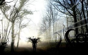 Wallpaper forest, fear, shadow