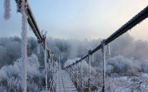 Wallpaper winter, frost, snow, bridge