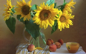Picture flowers, sunflower, Cup, pitcher, still life, peaches