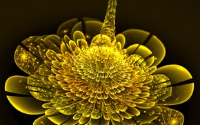 Picture abstraction, background, wallpapers, fractal flower