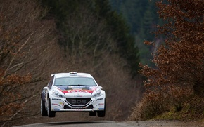 Picture Jump, Peugeot, Rally, The front, 208, T16, ERC