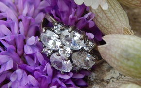 Picture flower, ring, diamonds
