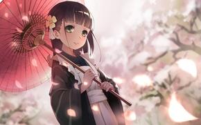 Picture spring, umbrella, petals, Sakura, girl, kimono, apron, bangs, big eyes, Chiya Ujimatsu