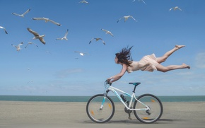 Picture girl, bike, shore, seagulls, speed