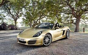 Picture Porsche, convertible, Porsche, Boxster, bokster