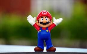 Picture Macro, Mario, Super Mario, Figure, Figurine