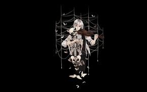 Picture butterfly, violin, web, skeleton, Guy, black background