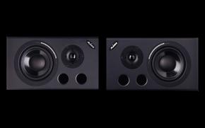 Picture speakers, speaker, Alesis