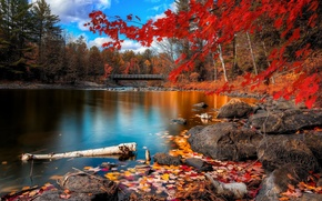 Picture Autumn, Beauty, Lake