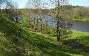 Picture trees, river, spring, Belarus, Vilia
