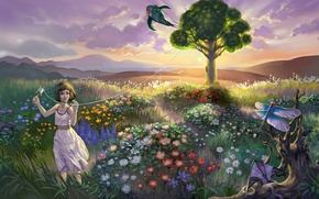 Picture field, the sky, clouds, landscape, sunset, flowers, tree, the evening, dragonfly, kite, girl, girl, sky, …