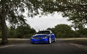 Picture Lexus, blue, F Sport, IS250