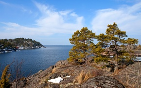 Picture sea, the sky, clouds, trees, rock, Sweden