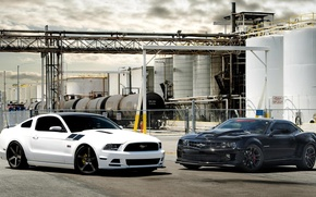 Picture Mustang, Ford, White, Chevrolet, Ford, Muscle, Camaro, Chevrolet, Mustang, Black, Camaro SS, Cars, Oil, Kara