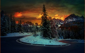 Picture road, snow, trees, mountains